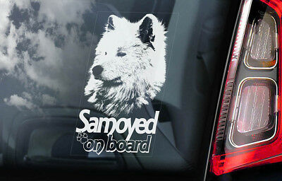 Samoyed on Board - Car Window Sticker - Bjelkier Sobaka Laika Dog Sign Decal-V02