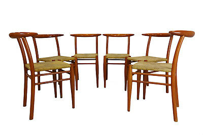 Philippe Starck ALEPH Tessa Nature chairs for Driade