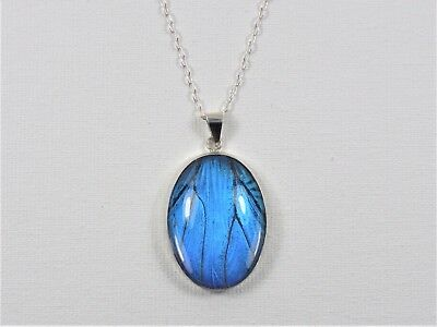 Blue Morpho Butterfly Wing Jewelry Pendant Necklace Sterling Silver 22x30mm