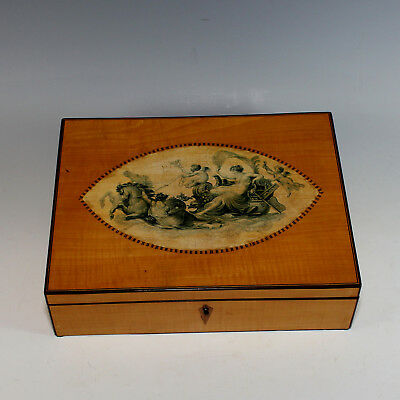 Rare Antique Regency Satinwood with Inlay Dresser Box