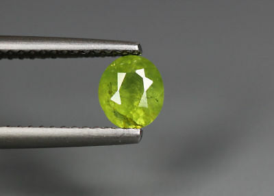 0.72 Cts_Stunning Very Rare Collection_100 % Natural Demantoid Garnet_Namibia