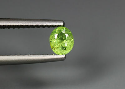 0.45 Cts_Stunning Very Rare Collection_100 % Natural Demantoid Garnet_Namibia