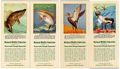 4 Ink Blotter Lot National Wildlife Federation Fish Bass Pike Duck Caribou NWF