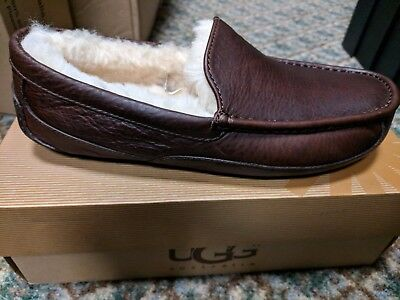 Ugg Men's Ascot China Tea Leather Size 8.  Brand New in Box Authentic Ugg!