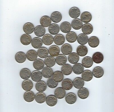 LOT OF 48 Buffalo Nickels Various Dates $2.4 Face Value