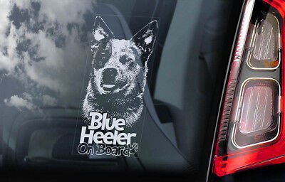 Blue Heeler - Car Window Sticker -  Australian Cattle Dog Board Decal Sign -V01