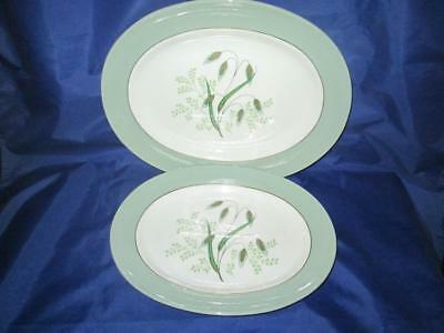 Set of Two (2) Copeland Spode Oval Serving Platters Soft Whispers Harold Holdway