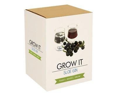 Grow Your Own Sloe Gin Garden Kit,  5 Growing Pots