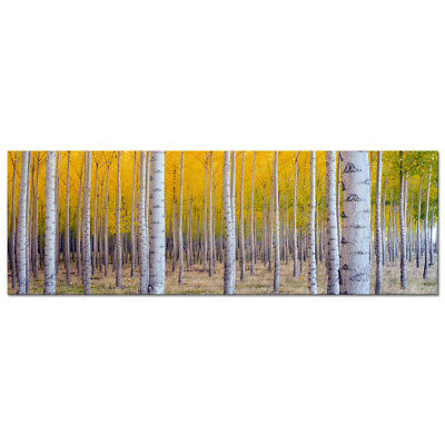 Large Canvas Print Wall Art Painting Pic Home Decor Woods Forest Photo Framed