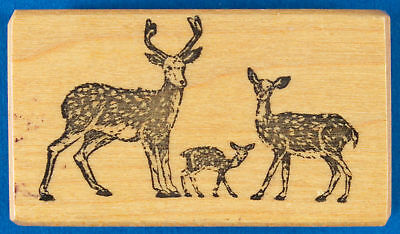 PSX Spotted Deer Family Rubber Stamp - Chital Stag Buck with Doe and Fawn - Axis