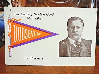 Vintage 1912 Political Postcard ~The Country Needs Teddy Roosevelt for President
