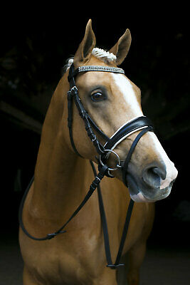 New Black Leather English Horse Bridle White Padded With Reins & Bling Browband