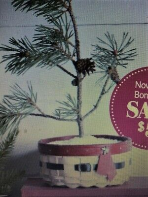 🎄 Longaberger 2017 JOLLY BELLY Basket & Protector ~ W/Color choice 🎄 ON SALE