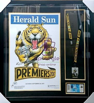 DIY Mark Knight 2017 Richmond Grand Final Ticket & Membership Card Framing Kit