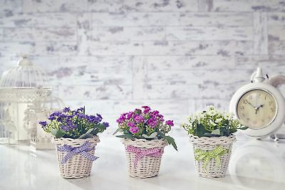 Artificial Forget Me Not Flowers Plants in Basket Home & Wedding Decor Garden