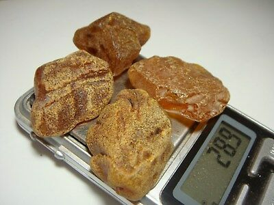 AMBER / raw baltic stones bernstein natural bursztyn baltycki genuine 琥珀 (e8114
