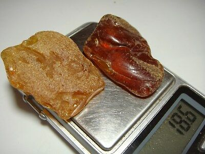 AMBER / raw baltic stones bernstein natural bursztyn baltycki genuine 琥珀 (e8118