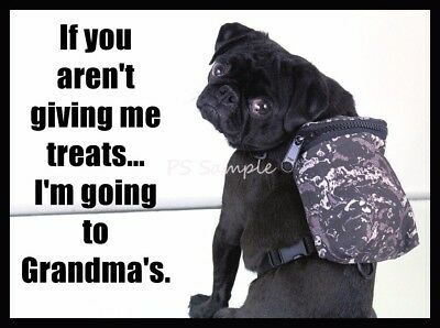 BLACK PUG Going to Grandmas's House Funny Magnet 4 x 3 inches