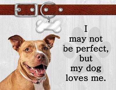 PIT BULL TERRIER I May Not Be Perfect But My Dog Loves Me Magnet