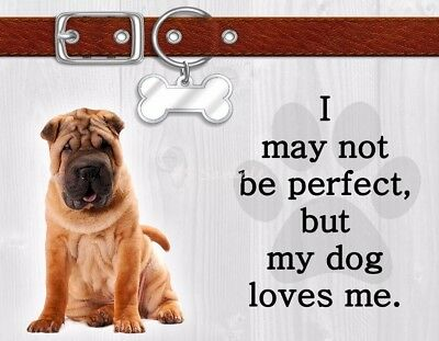 SHAR PEI I May Not Be Perfect But My Dog Loves Me Magnet