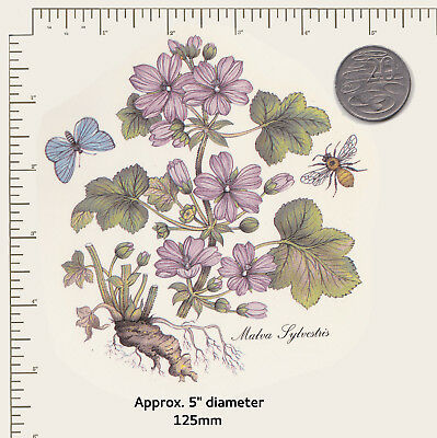 "1 Ceramic decal Decoupage Common Mallow Floral Botanical 5"" COMBINE POSTAGE P56"