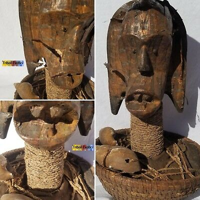 PREMIUM Tribal African Art - Fang Bieri Reliquary Figure Sculpture Statue Mask