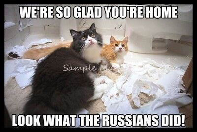 "CATS Look What the Russians Did Toilet Paper Funny Fridge Magnet 4"" x 3"""