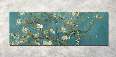 New Canvas Print Art Oil Painting Abstract Wall Decor Set Frame Apricot Flowers