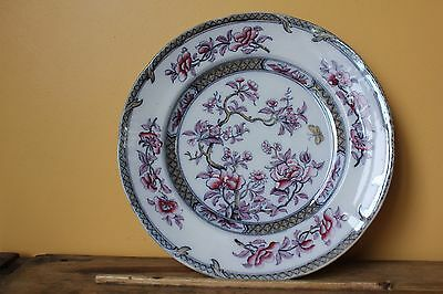 Antique, Over 170 Years Old, Thomas Dimmock Plate. Pearl Ware, Chinese Tree.