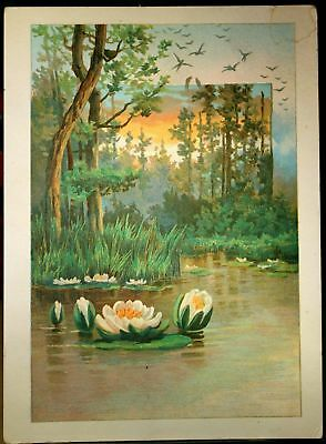 Lillies in the Pond Artwork, on 1891 Victorian Trade card by Lion Coffee