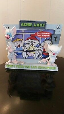 Pinky and the Brain picture frame