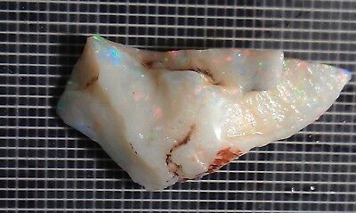 Australian Opal Rough  10.2 Cts Coober Pedy Mixed Colour ® Gtopals © #bk13