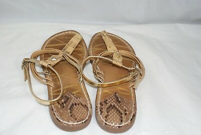 9d27106c61ea Sam Edelman Women s Size 8.5 Brown Gold Strappy Gladiator Sandals Ankle  Fastened
