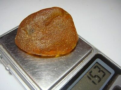 AMBER / raw baltic stones bernstein natural bursztyn baltycki genuine 琥珀 (e8284