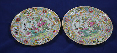A pair of antique  Chinese  Export Famille Rose Plates 19th Century