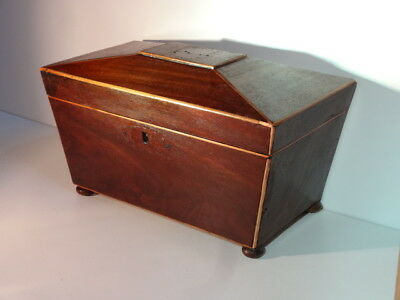 ANTIQUE Mahogany Sarcophagus Tea Caddy with Edge Stringing