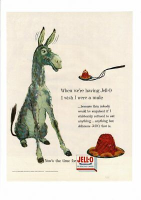 Vintage 1954 Ugly Funny Jackass Mule Donkey Eating Jell-O Mold Stubborn Ad Print