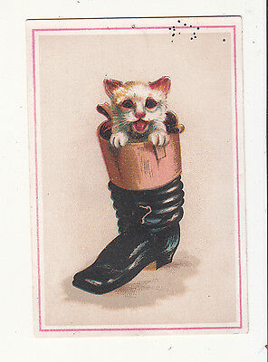 White Kitten in Black Boot  No Advertising Vict Card c1880s