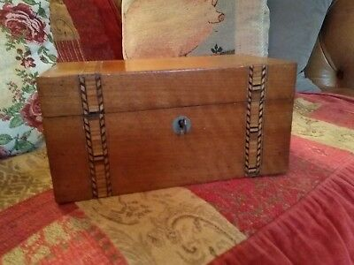 Antique Walnut Tea Caddy With Marquetry Banding * With Working Key*