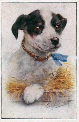 Vintage SIGNED Postcard PC Jack Russell / Fox Terrier Dog Portrait Germany 1910
