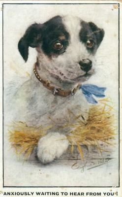 Old SIGNED Postcard PC Jack Russell / Fox Terrier Dog England c1910