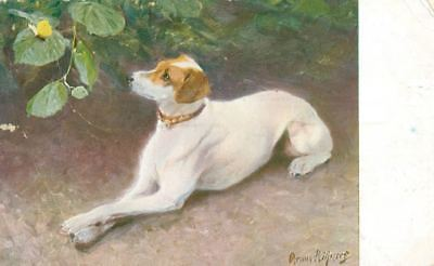RARE 1897 SIGNED Smooth Fox Terrier Portrait on 1911 Postcard PC Dog Sweden
