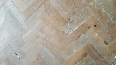 Reclaimed Pitch Pine Parquet Flooring From Old School Hall Good Condition
