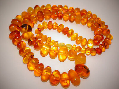Amber Antique Vintage Natural Baltic Egg Yolk Butterscotch Amber Necklace