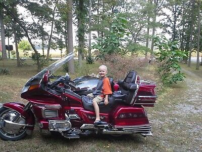 1994 Honda Gold Wing  1994 HONDA GOLD WING WITH REVERSE HANNIGAN SIDE CAR 54000 MILES GOOD CONDITION
