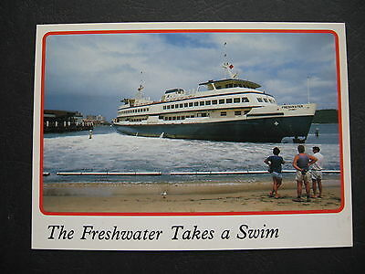 Freshwater Beached Manly NSW Australia
