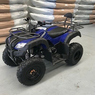 ATV/QUAD AG HAMMER 200cc FARM QUAD ATV HUNTING AG BIKE ASSEMBLED