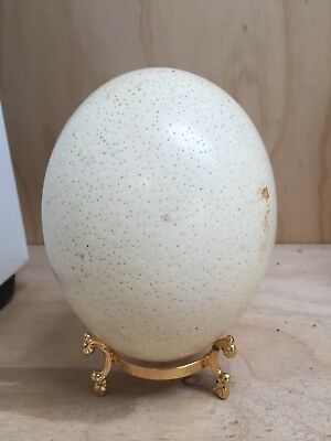 Ostrich Egg On A Stand.