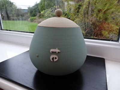 Glosters Porthmadog Handmade Lidded Te (Tea) Pot Duck Egg Signature Shape