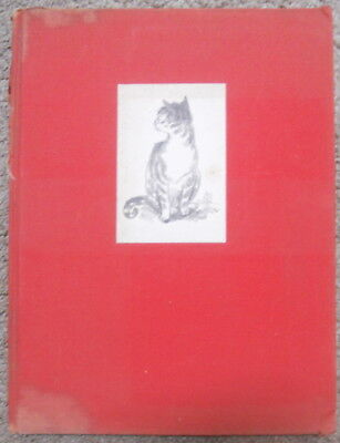 Buttons Tom Robinson Vintage Children's Cat Story Book Illustrated 1938 Nice!